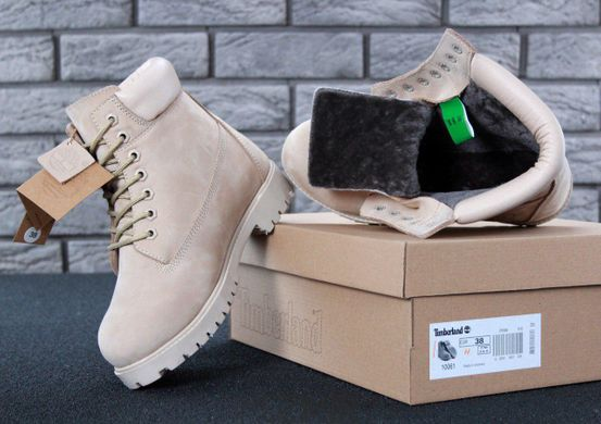 Купить Жіночі зимові черевики Timberland Winter