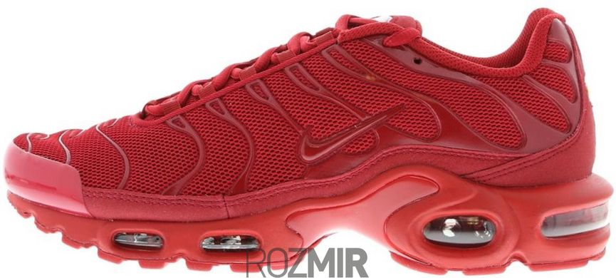 0df08bf1 Мужские кроссовки Nike Air Max TN Plus